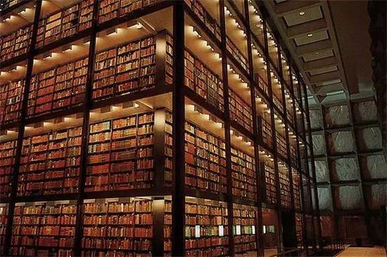 最让我印象深刻的就是耶鲁大学的图书馆,壮观!