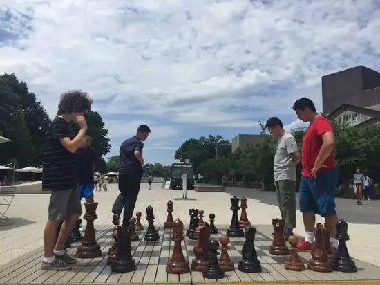 在哈佛的校园里,国际象棋是美丽的一道风景线