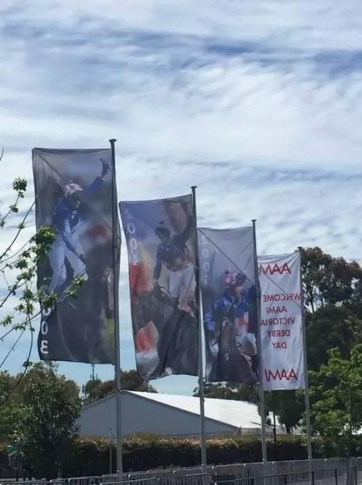 '戴花'在费明顿马场夺得三届墨尔本杯的旗帜