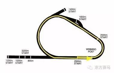 体育场主接线图