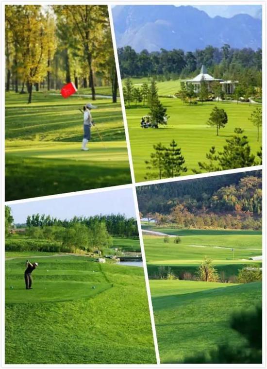 一座高尔夫球场那是一个小型生态体系,成为抵制雾霾的绿色屏蔽