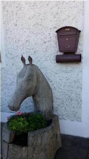 诊所门口的木质雕塑