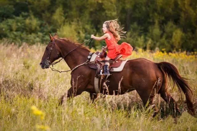 人为什么要骑马?八大理由告诉你 骑马好处有很多