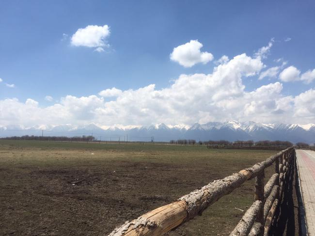 祁连山生态牧场