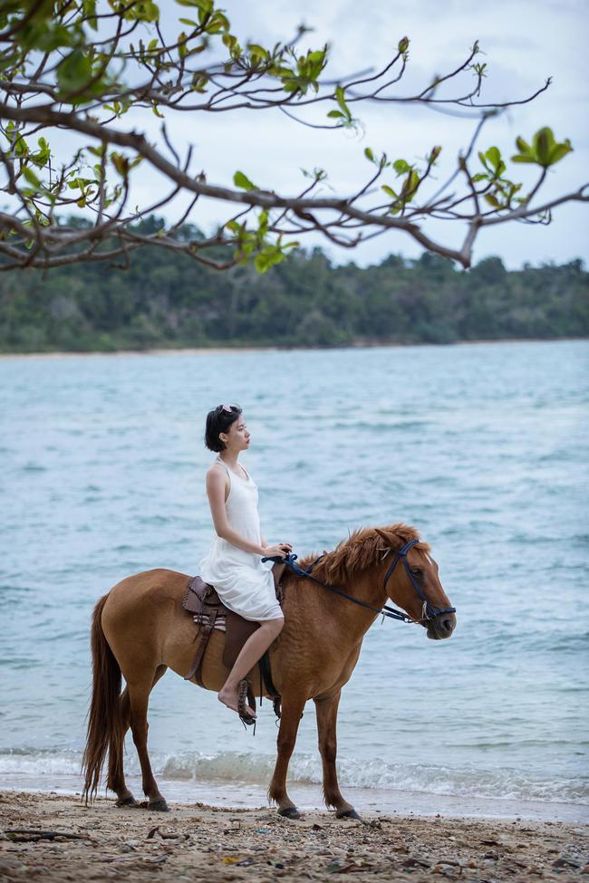 海边骑马talan