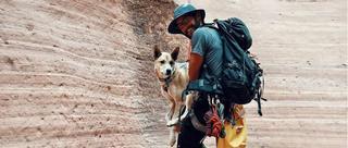 美夫妇带爱犬自驾环游全美