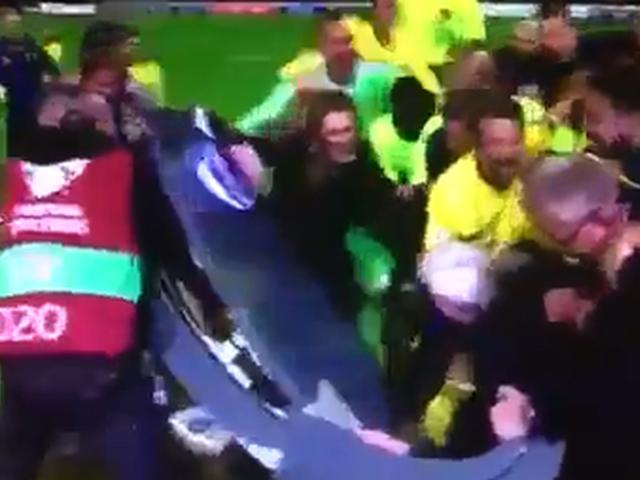 瑞典球员疯狂庆祝出线