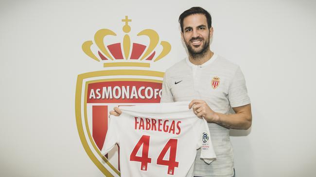 法布雷加斯展示44号球衣