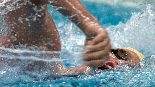 澳名将珀金斯任泳协主席 备战奥运强调稳定专注度