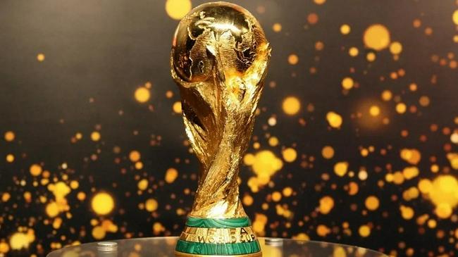 2年1届世界杯议程继续推进 国际足联邀211个足协讨论