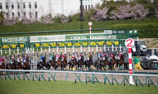 高松宫纪念赛