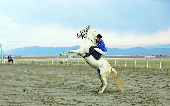 4月8日,天马旅游文化园区骑手在昭苏县喀尔坎特大草原上调训马匹,排演马上节目。 □李文武摄