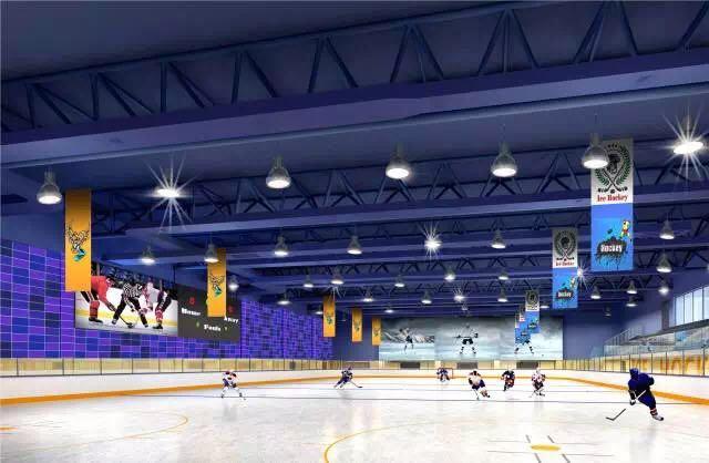 朝阳凯文室内冰球馆