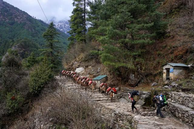数百登山者被困喜马拉雅山 喜马拉雅山在哪个国家有多高海拔多少