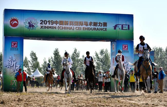 2019中国新民国际马术耐力赛