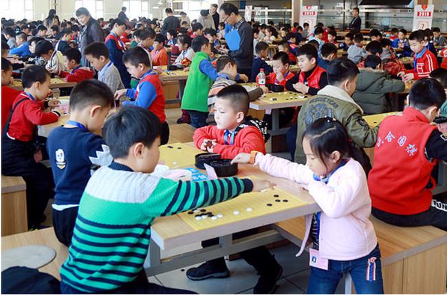 黑龙江省冬季围棋段级位赛开赛