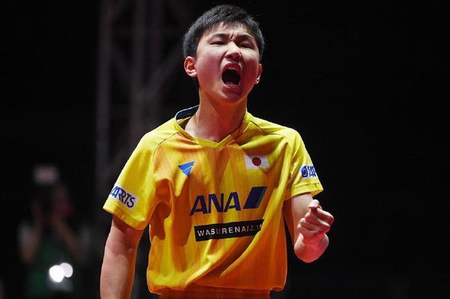 张本智和勇夺2018国际乒联巡回赛总决赛男单冠军