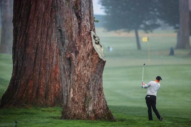 PGA锦标赛战术分析:70杆标准杆 救球和保帕重要