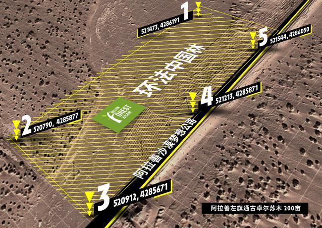 環法中國林座標地點——阿拉善沙漠夢想公路