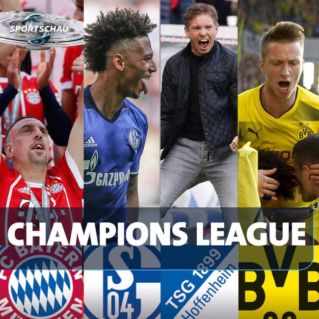 欧冠:拜仁、沙尔克04、霍芬海姆、多特蒙德