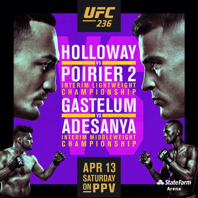 UFC 236 霍洛威 VS 普瓦里尔