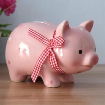 石昱婷的猪猪存钱罐