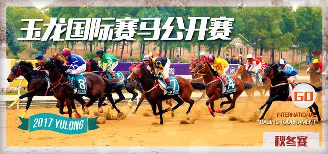 玉龙国际比赛骑马公开始比赛