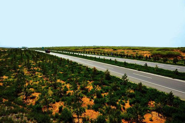 靖边县今年将造林9.4万亩