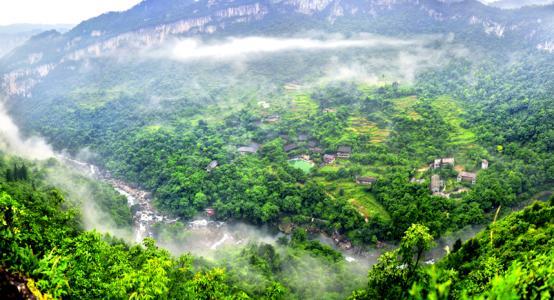 """陕西森林覆盖率由13.3%提高到43.06% """"退""""出秃岭荒山"""