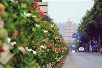雁塔区建成15分钟便民休闲圈 累计建成绿地广场57个