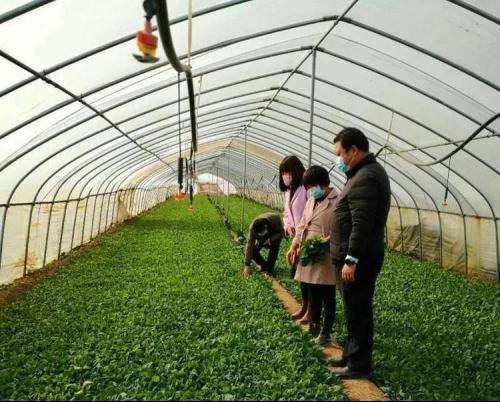 致富不忘乡亲 沣西新城绿康扶贫产业园助力脱贫攻坚