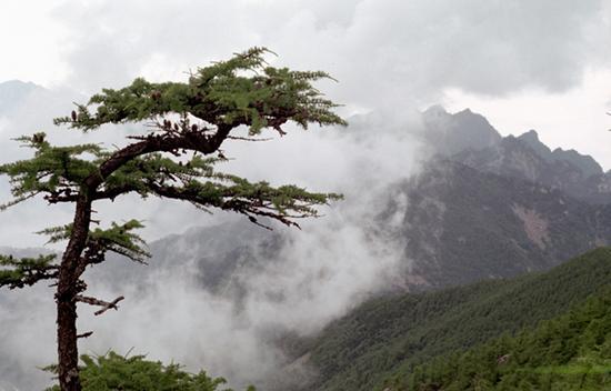 太平国家森林公园
