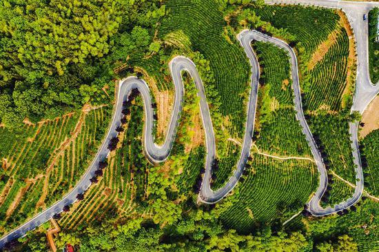 5月24日,在平利县长安镇高峰村,蜿蜒在茶山之中的柏油路。