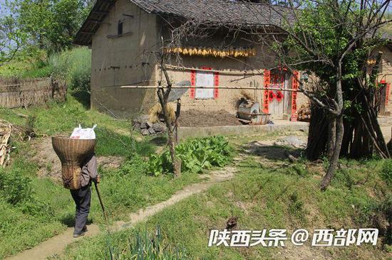 李安兴背着挂面行走在山间小路上。