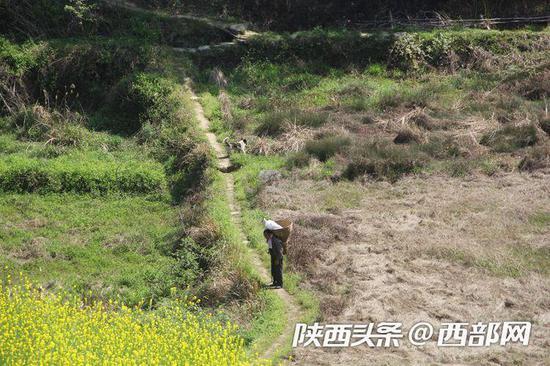 从山腰下到山底还要上山,才能将60斤挂面送到村民李林成的家。