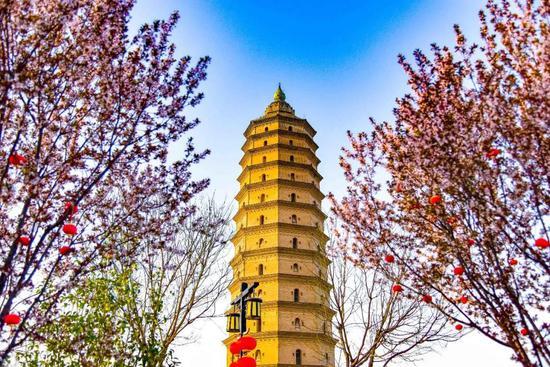 西咸新区:邂逅属于你的万千春色