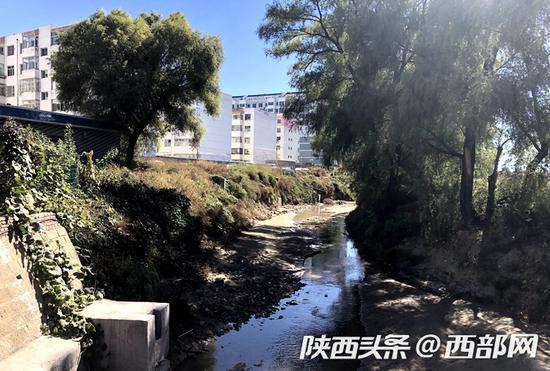 榆阳河两岸绿树成荫,河水水质较之前有了很大提升。