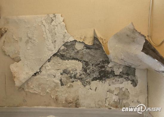 姜女士家客厅和卧室有两三处墙皮和墙纸大面积脱落。