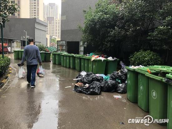 和城小区北门垃圾池乱象。
