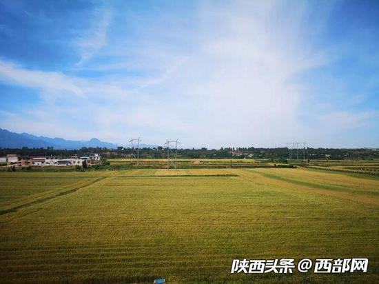 天王村华丽变身梦中美丽乡村