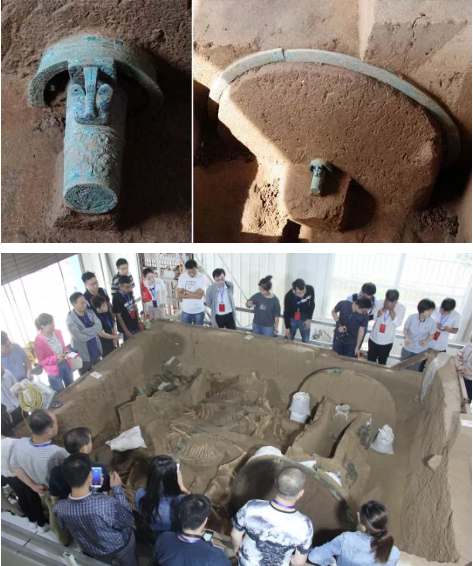 目前存于陕西省考古研究院泾渭基地中的西周周原贺家西周铜轮牙车马。
