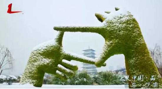 雪后的长安塔,真的是美了,美了