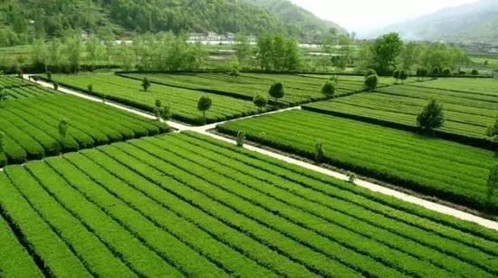 来源:陕西省旅游发展委员会