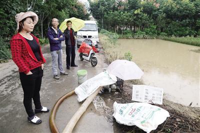 村民用水泵抽水 本报记者 李宗华摄