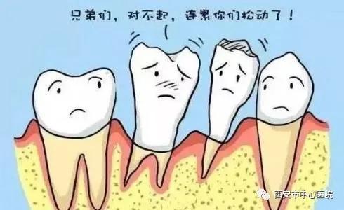 十分松动的牙齿