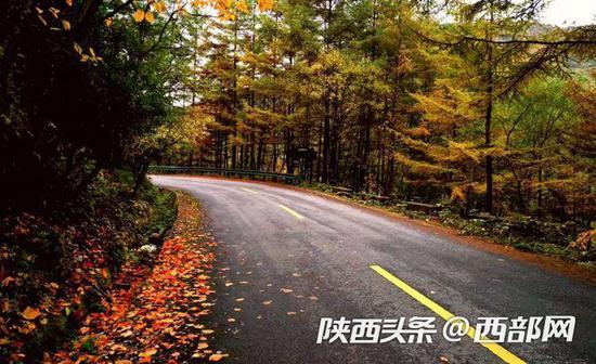 黄柏塬秋景。
