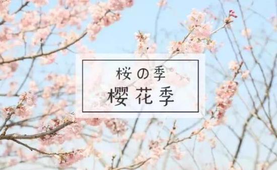 相约浪漫?;?,还去什么日本,来高新就够了!