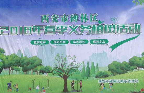 碑林区干部群众千余人新栽植苗木万余株