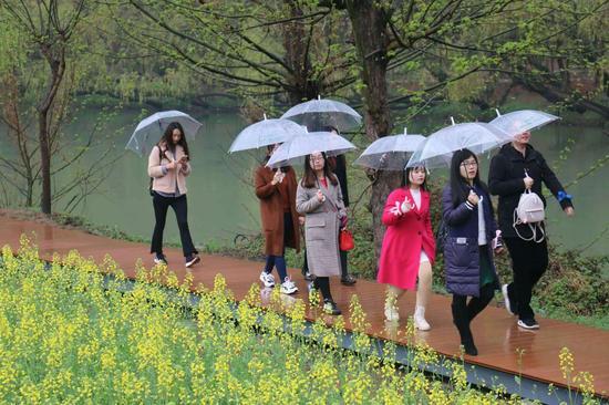 活动嘉宾在勉县龙湾参观油菜花海