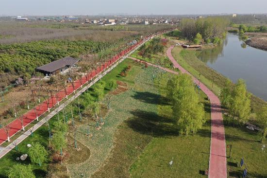 沣渭生态区:田园特色滨水生态景观廊道 春意盎然